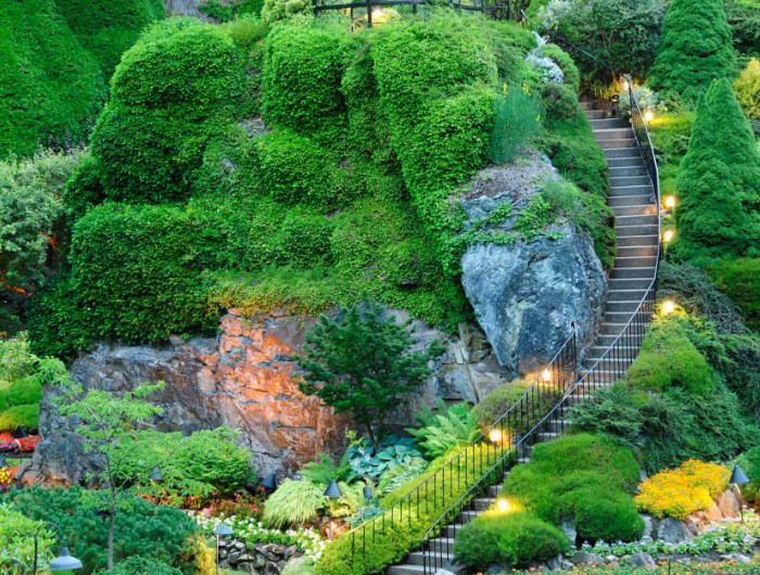 Blog-35-Jardines-de-famosos-enredadera-arbustos-y-escalera