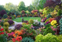 jardines bonitos