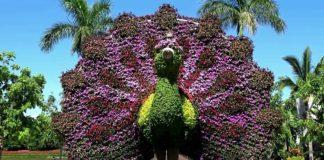 jardines de méxico